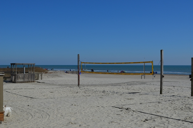 Volleyball Nets at Coligny Beach