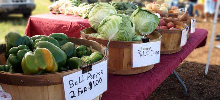 Farmers Market Hilton Head Island