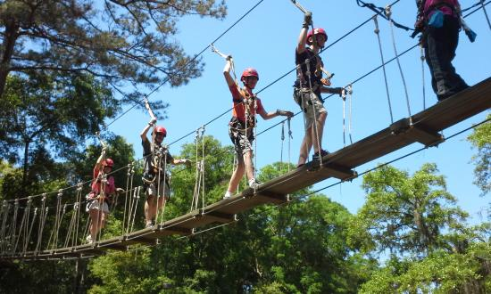 zipline-hilton-head bridge