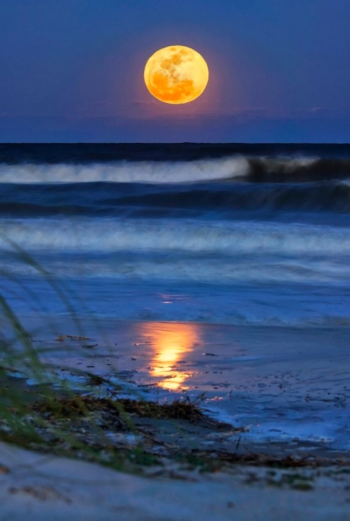 A full moon, Hilton Head Island, SC