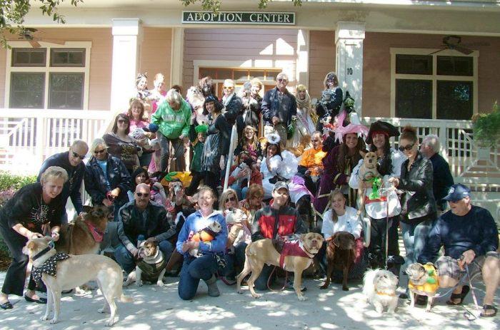 Humane Association 4