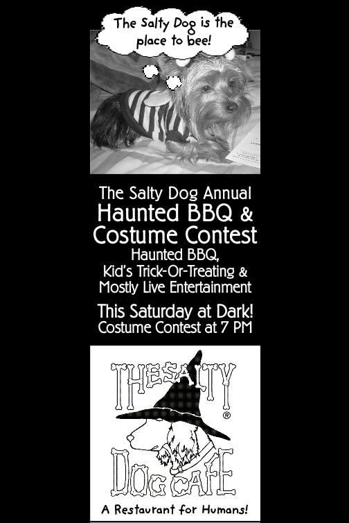 Salty Dog Halloween Contest