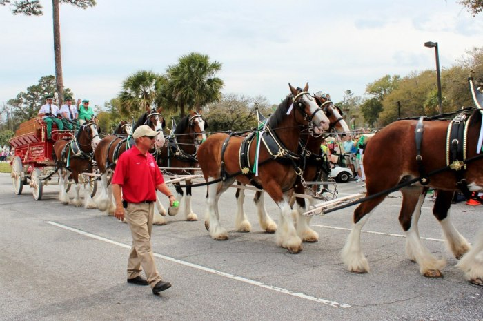 St. Patrick's Day Parade on Hilton Head