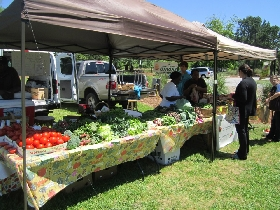 Shelter Cove Farmer's Market