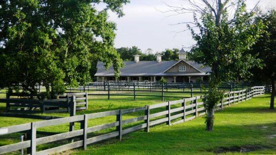lawton stables lawn