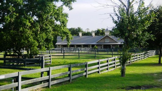 lawton stables lawn