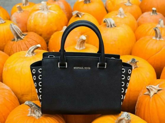 michael kors bad and pumpkins