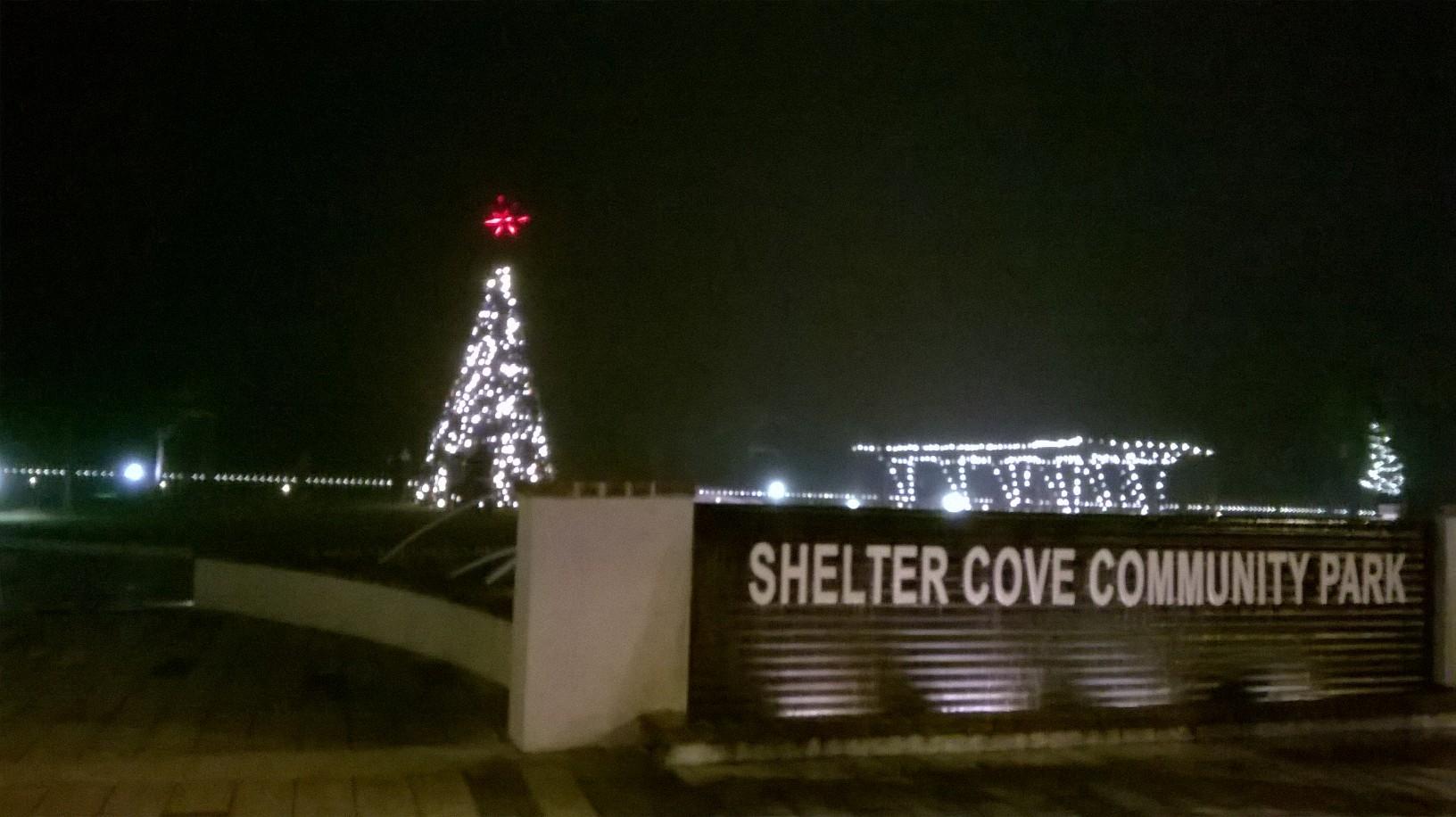 shelter cove park tree
