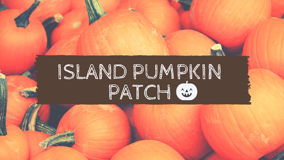 island pumpkin patch.png