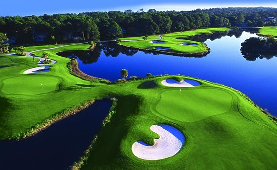 the-golf-courses-of-palmetto-1.jpg