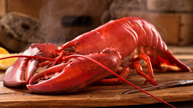 live-maine-lobster-640-2017-BOGO.jpg