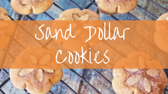 sand dollar cookies.png